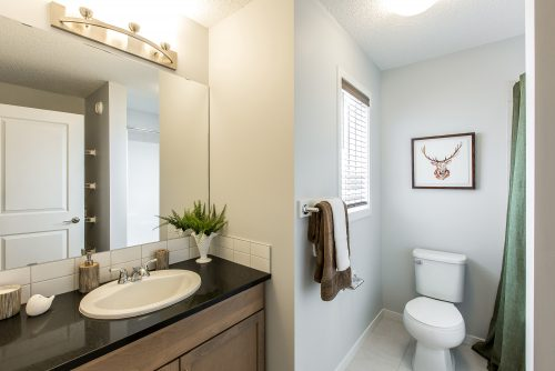Burton Showhome Main Bath In Solstice