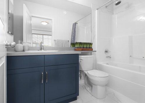 Brookfield Chappelle Cadenza bathroom
