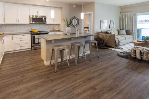 Kitchen In Kingston Condo Regatta Auburn Bay